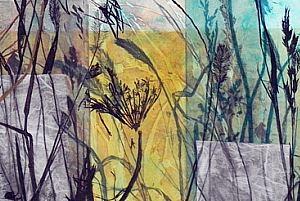 lynda_goldberg_meadow
